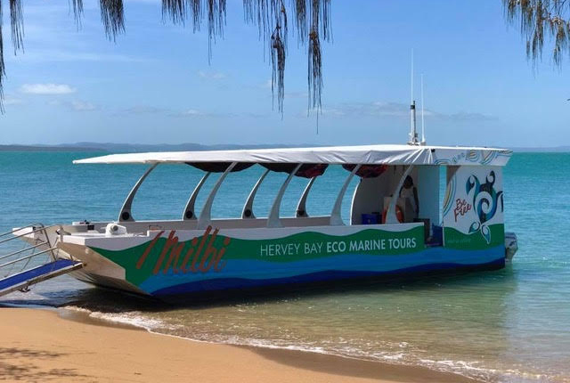 Hervey Bay Eco Marine Tours